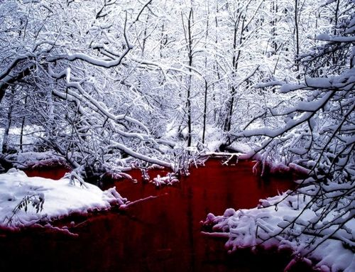 SCP-354 - A pool of red liquid discovered in northern Canada. The liquid is of a consistency similar to that of human blood (hence the colloquial name Blood Pond) but is not of a biological nature. Periodically, entities emerge from the pool and attempt to escape from the enclosure. Thusfar, nearly all creatures emerging from SCP-354 have been extremely hostile and highly dangerous.