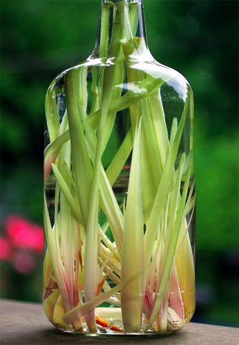 Lemongrass vodka