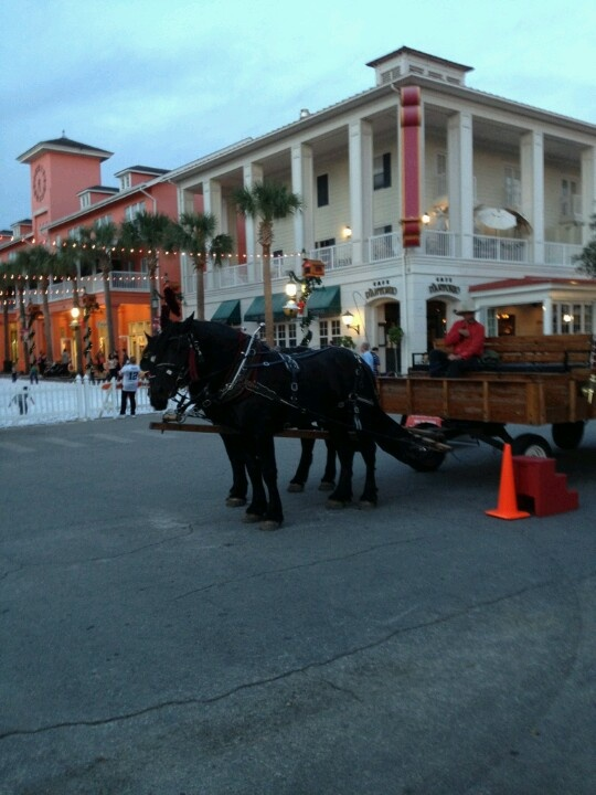 The town features a nightly snowfall during the end of December. Also offers horse drawn rides through town. The big beautiful homes are lit up with Christmas lights for the holidays. Celebration Florida