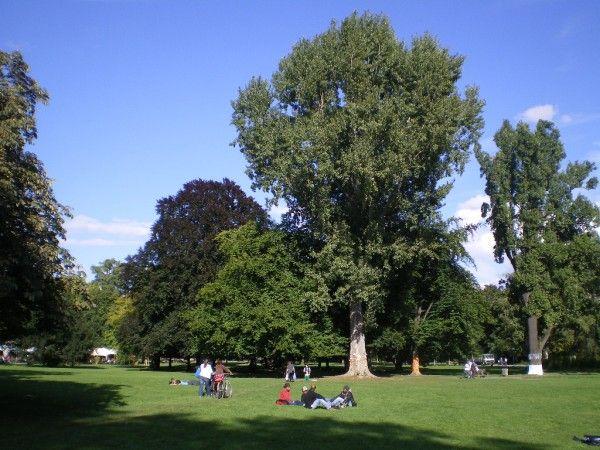 Amazing Mittlerer Schlossgarten Stuttgart am Foto Welz