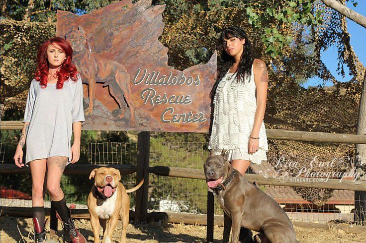 The daughters of Villalobos Rescue Center Tania & Mariah with Tater & Bluie Pit Bulls & Parolees pitbull love
