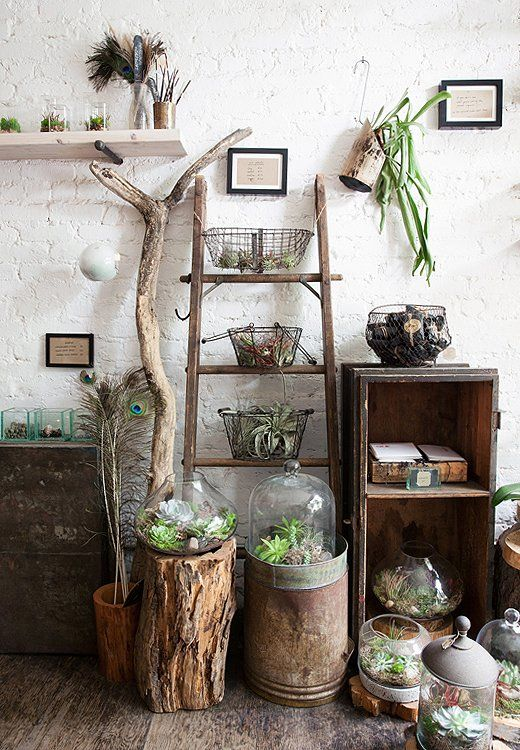 Natürlich und robust: Holz, Glas und Pflanzen verschieden arrangiert #pflanzenfreude