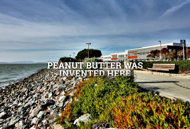24 Things You Don't Understand About Alameda (Unless You're From There)