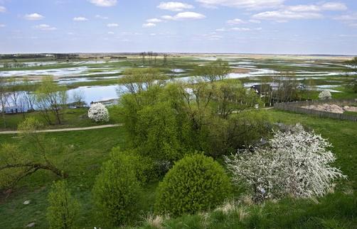 Wetland park in Biebrza