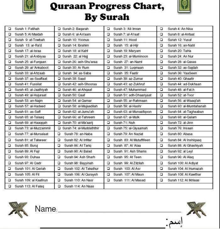 Quran progress chart, by surah