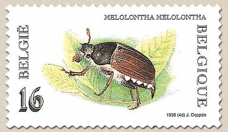 belgian stamps Nature : Insects.Meikever / Hanneton