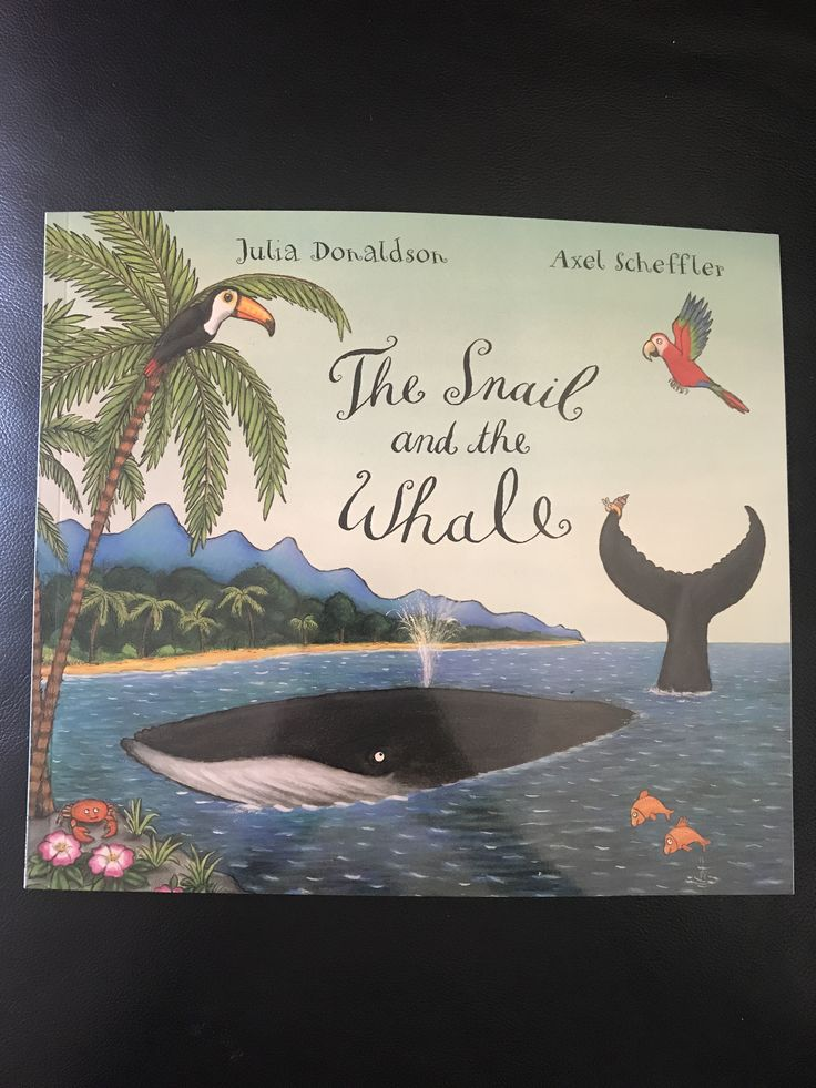 'The Snail and the Whale' by Julia Donaldson & Axel Scheffler