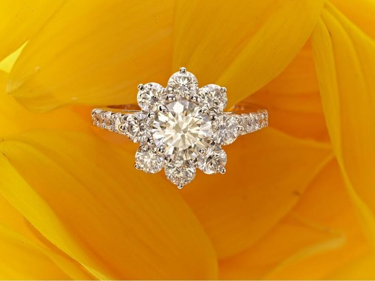 Harry Winston Sunflower Ring. Looks like the small or medium sized ring. Definitely not the large.