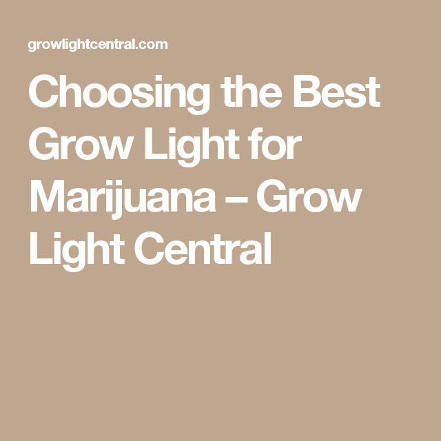 Choosing the Best Grow Light for Marijuana – Grow Light Central