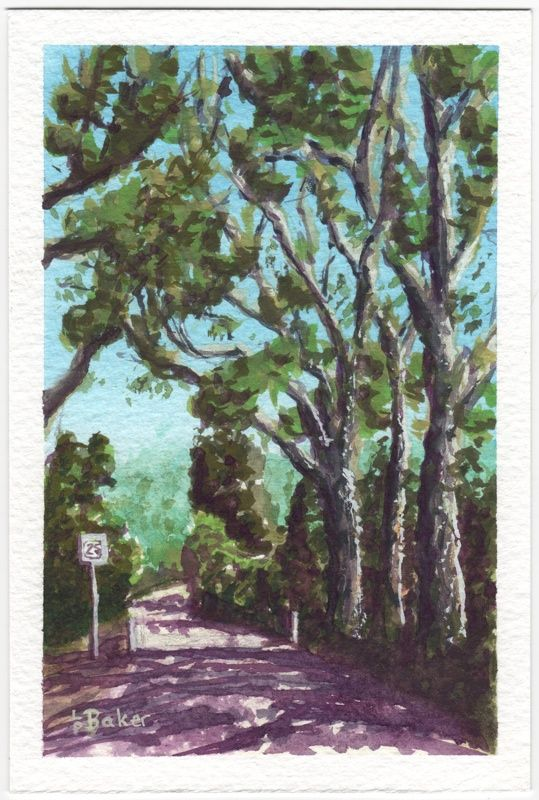 North Head Trees, gouache on paper, painted by me.