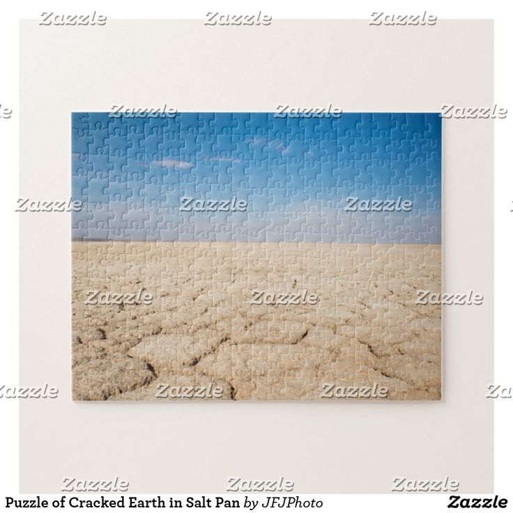Puzzle of Cracked Earth in Salt Pan