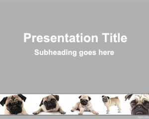 how to create amazing powerpoint presentations