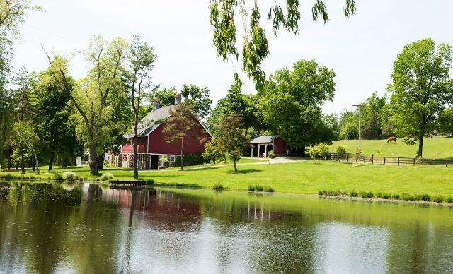 Elderberry Pond Farm Restaurant Ny