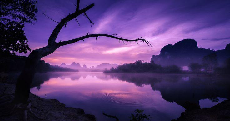 En la lucha contra la realidad el hombre tiene solo un arma: la imaginación (Teófilo Gautier) ....... Fot.: VManeechote #thailand #tailandia #krabi #amanecer #sunrise #lago #lake #niebla #fog #paisaje #seascape #arbol #tree #naturaleza #nature #musica #music .......  Tom Petty - Free Fallin'