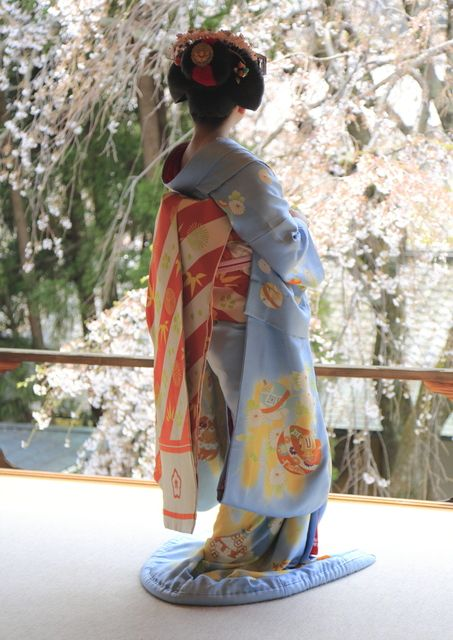 Maiko Kanoemi among the cherry blossoms in April 2014. Such a classic picture! (SOURCE - KTHU1822 BLOG)