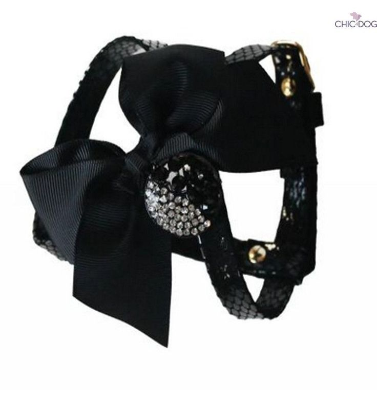 Happy New Year #dog #harness - matched with Happy New Year Leash | Pettorina abbinata al collare Happy New Year #Chic4Dog