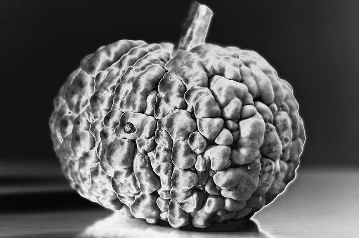 https://flic.kr/p/NzFmSC | brain veg