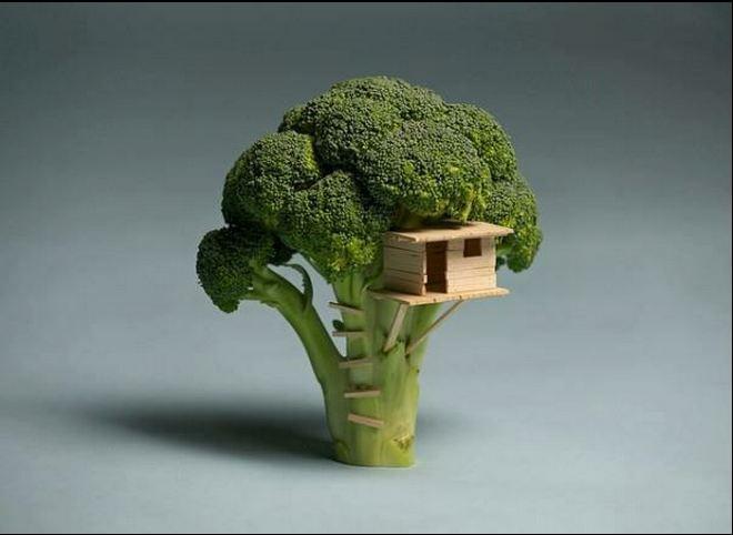 Cool Homes :: broccolitreehouse.jpg image by vvjustbiz - Photobucket