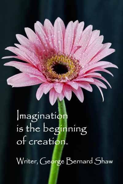 """Imagination is the beginning of creation.""  -- George Bernard Shaw.  More QUOTATIONS FOR WRITING INSPIRATION!  Explore forty quotes to inspire writing published at http://www.examiner.com/article/forty-quotations-for-writing-inspiration"