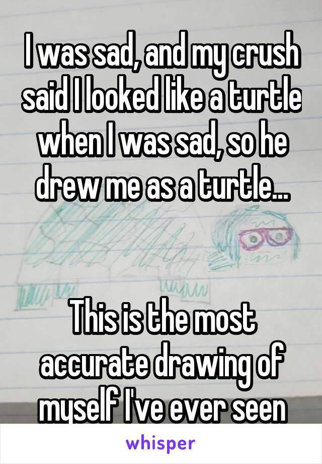 I was sad, and my crush said I looked like a turtle when I was sad, so he drew me as a turtle...   This is the most accurate drawing of myself I've ever seen