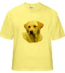 The Hangover 2 Yellow Lab Adult T-Shirt