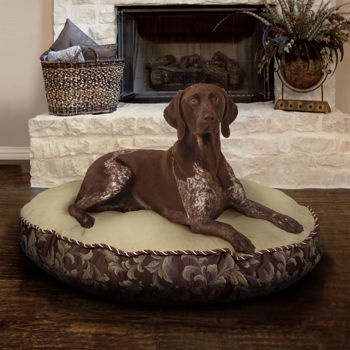 a loki musthave actually thereu0027s one in every room of the house available from costco kirkland signature round pet bed the cover zips off andu2026