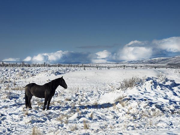 MAKIA ALASKA by Kimmo Syvari. Source: http://scramblerworld.com/2012/01/09/makia-alaska/