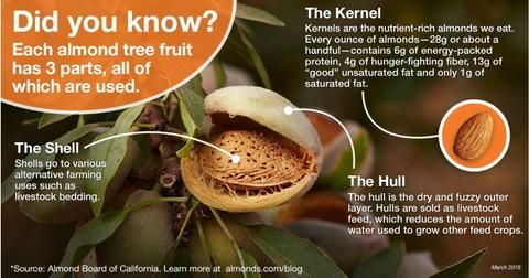 All California almonds aren't created equal. Each type is highly versatile and available in numerous varieties.
