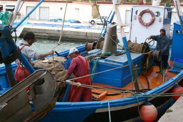 El Gobierno murciano establece las bases para las ayudas por paralización temporal de la actividad pesquera de la flota de cerco y arrastre
