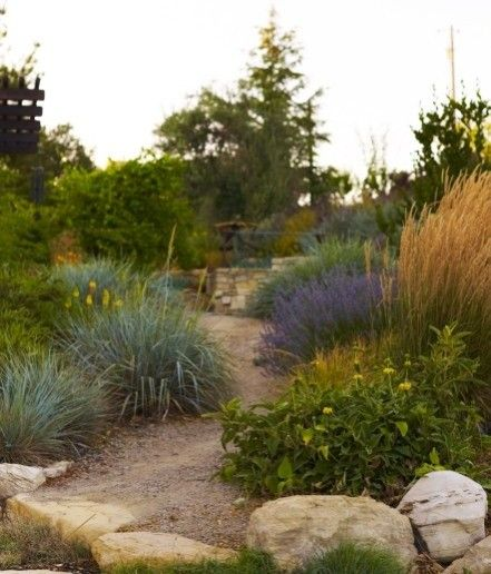 YES! Love the pathway of crushed rock and the natural/native plants lining the path!