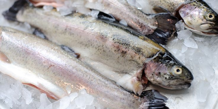 How to Cook Trout guide from Great British Chefs explores various ways of Cooking Trout Recipes.
