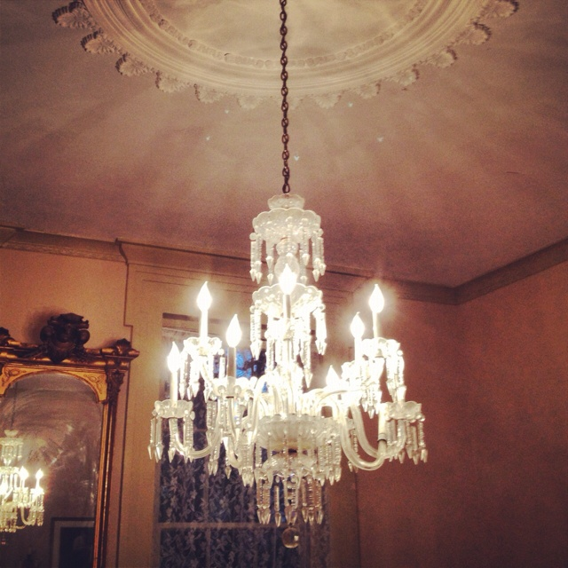 Elegant Dining Room Chandeliers: Formal Dining Room Chandelier... The Magnolias... Holly