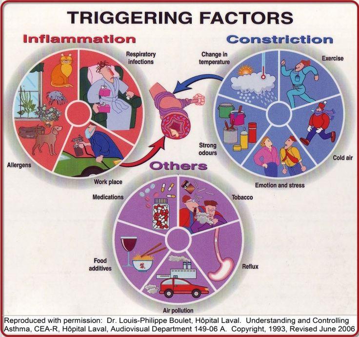 Asthma triggering factors –   Calgary COPD   University of CalgaryDonna Ayres