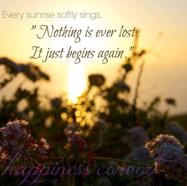 Quotes About Sunrise 75 Best One Little Word Sunrise Images On Pinterest  Scriptures .