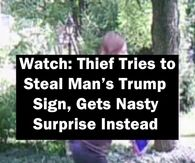 Watch: Thief Tries to Steal Man's Trump Sign, Gets Nasty Surprise Instead