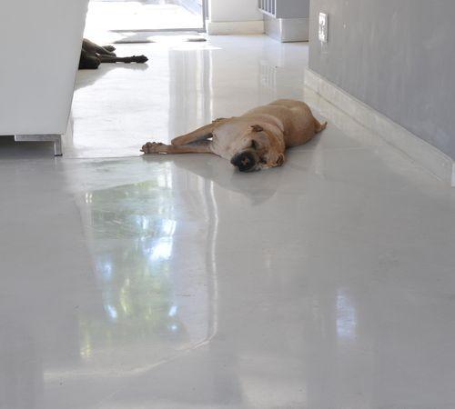 123 Best Floors Images On Pinterest Flooring Floors And