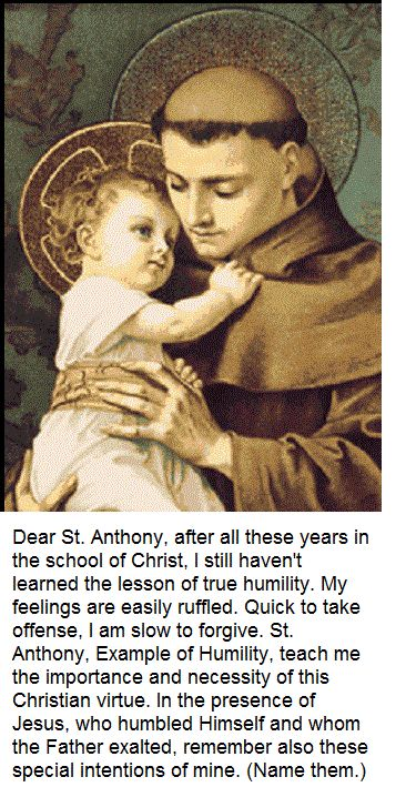 St Anthony Of Padua Hammer Of Heretics Padua Saints