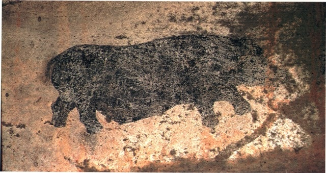 rhino rock painting by ancient San tribe