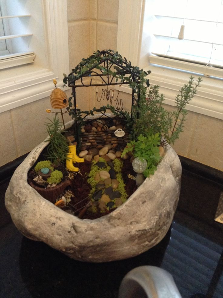 My Fairy Garden!