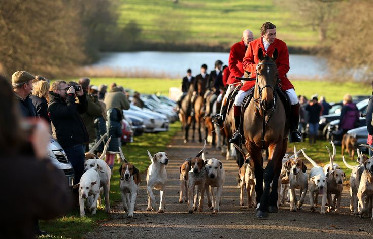 Countryside Alliance Warns Tory Party It Risks Losing Heartlands In 'Naive' Push For Animal Rights