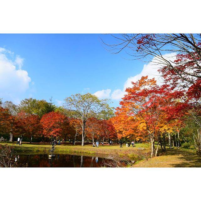 【yuchi_sakai】さんのInstagramをピンしています。 《* 🌏🍁🍂福原山荘🍁 ∵ ∵ 毎年約1ヶ月間の限定公開。 今年は10月23日まで。  別アングルから(^_^)/~~ ∵ 紅葉狩りの人達がいっぱい‼ * (*^^*) ∵ ∵  #池 #紅葉 #絶景 #風景 #自然 #景色 #森林 #福原山荘 #然別峡 #鹿追町 #viewpoint #special_spot #landscape #ig_nature #ファインダー越しの私の世界 #写真撮ってる人と繋がりたい #写真好きな人と繋がりたい #hokkaido #hokkaidolikers #ig_japan #loves_japan #nikon #d5300》