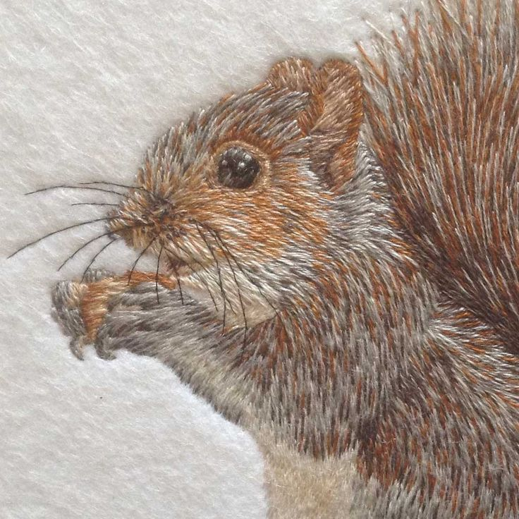 Grey Squirrel Original Hand Embroidery