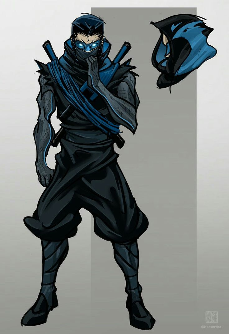 ninja nightwing by Nexxorcist