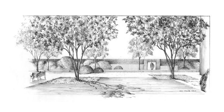 Long island garden view from the terrace pencil drawing alan hughes