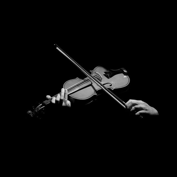можете картинка скрипка на черном фоне тем