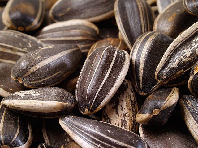 5 superbeneficii pentru sanatate ale semintelor de floarea-soarelui