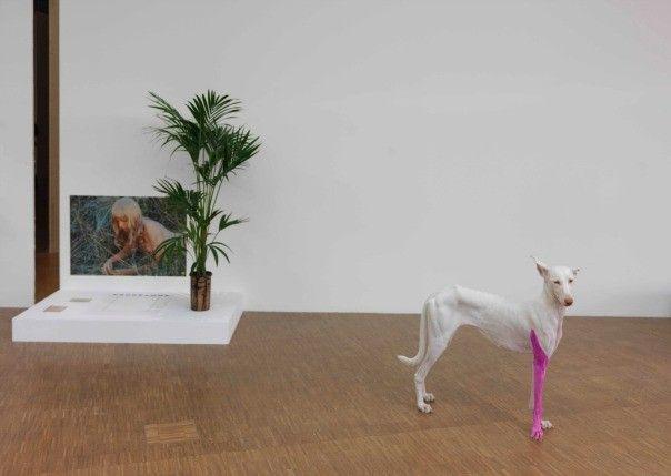 """Les Inrocks - Pierre Huyghe au Centre Pompidou : """"J'intensifie ce qui est là"""""""