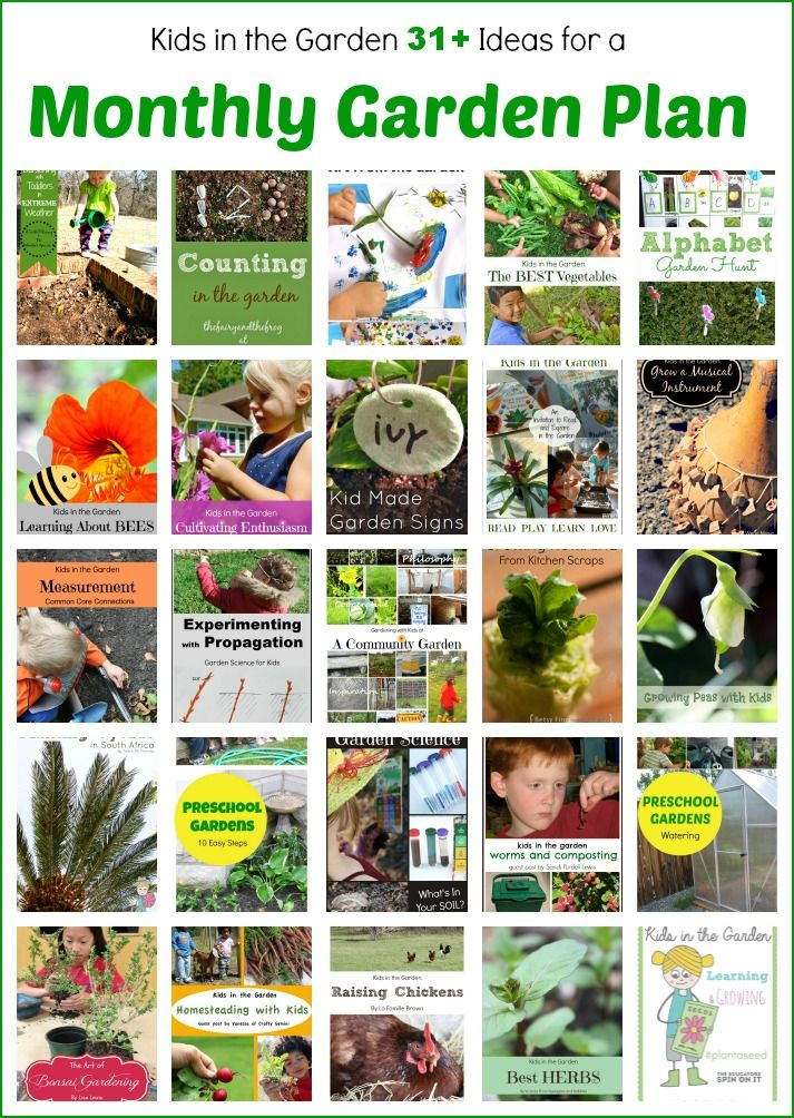 631 best gardening with kids images on pinterest gardening tips organic gardening and plants