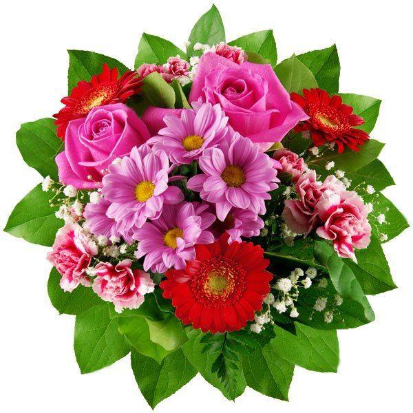 Доставка на цветя и букети до 40лв . Евтини букети и цветя - E-Cvetia.com
