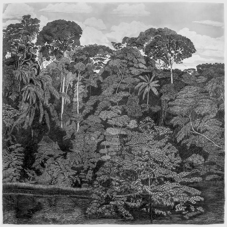 """francisco faria - """"o caminho da floresta para o mar I: selva do interior"""" (the path from the forest to the sea I: jungle of the inland), 2016, graphite on paper, 150 x 150 cm."""
